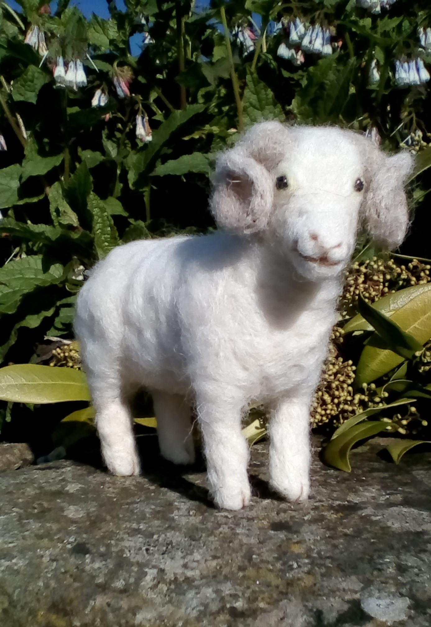 Herdwick British Rare Breeds sheep  needle felt kit   UNBOXED WULYDERMY